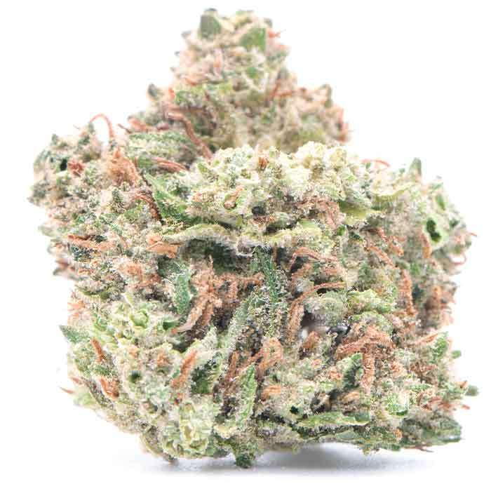 West Coast Treez | GMO Cookies