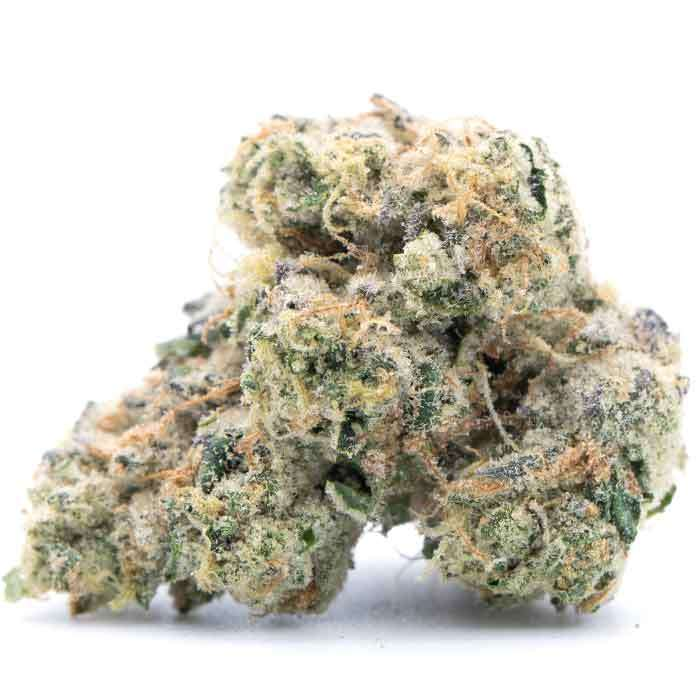 Gemini from Source Cannabis