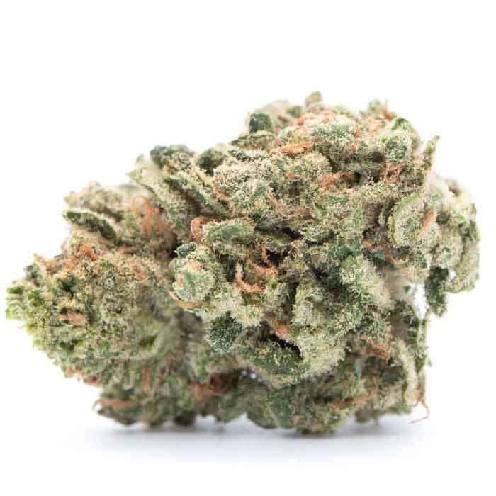 All Times | 1/2 Oz from Miss Grass