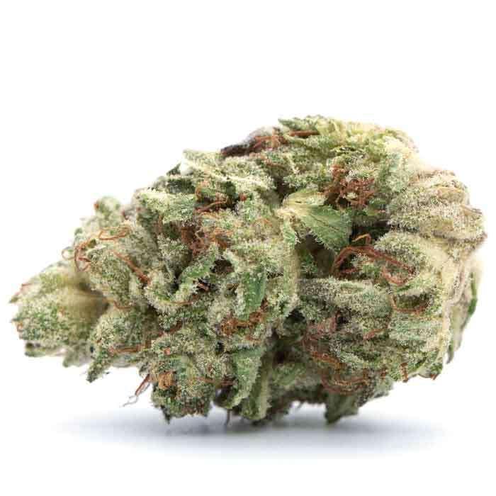 1/2 Oz Smalls | Cherpaya from Tommy Chong's Cannabis