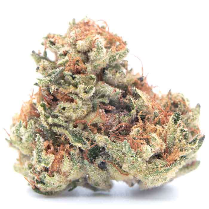 Mendo Breath | Jar from Awesome Dope