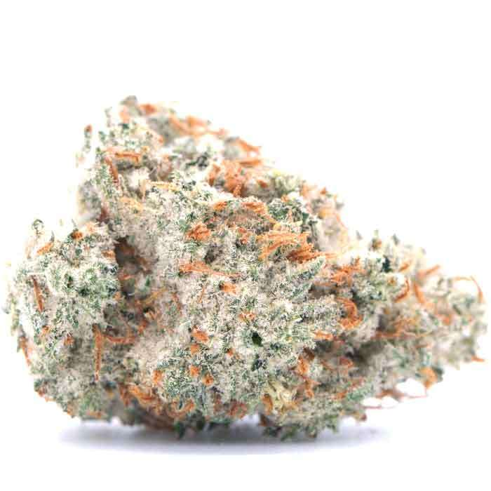 Quest from Source Cannabis