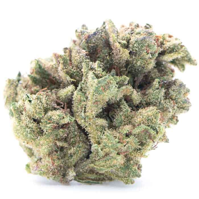 Guava Gas from Island
